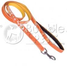 Laisse 2D Motif Coeur Orange