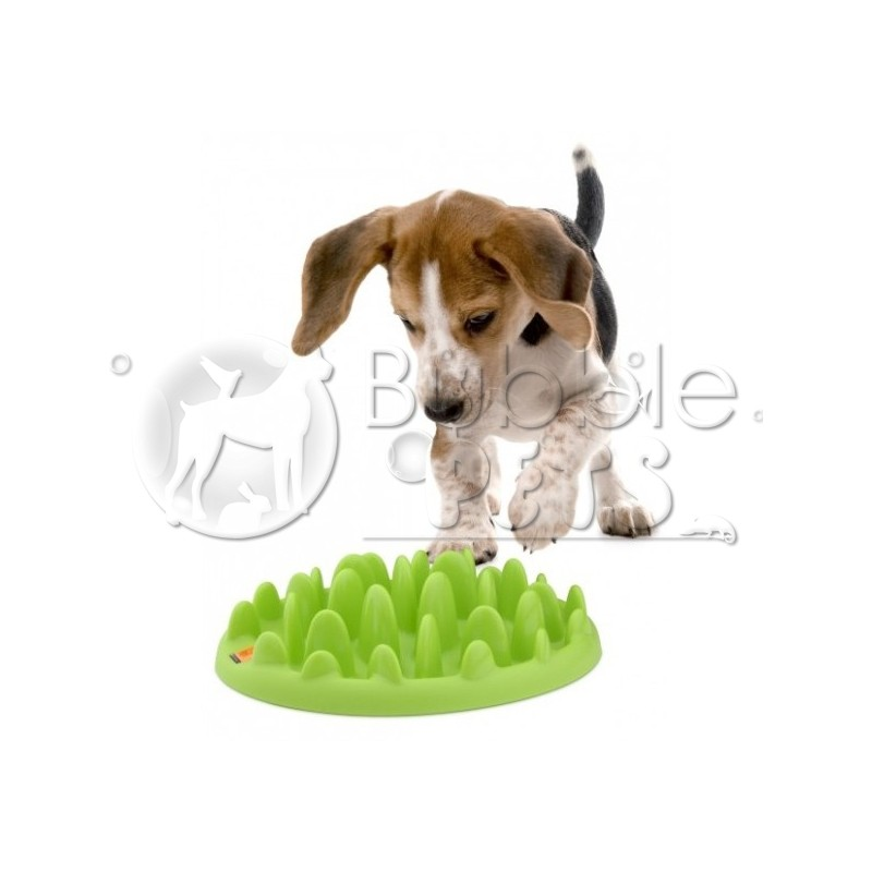 gamelle anti glouton northmate green mini bubblepets. Black Bedroom Furniture Sets. Home Design Ideas