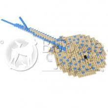 Lego - Blue Spot Stingray - Taeniura lymna - Raie pastenague à points bleus