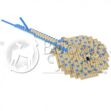 Lego - Blue Spot Stingray - Taeniura lymna - Raie pastenague à points bleus