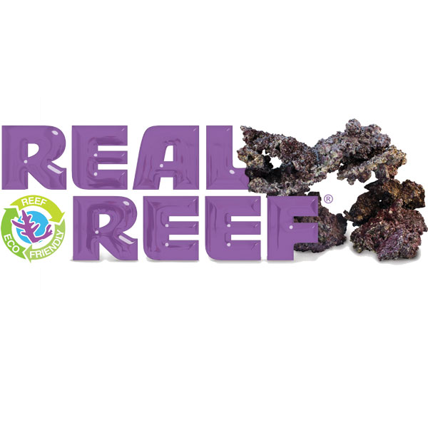 9483539real-reef-rock