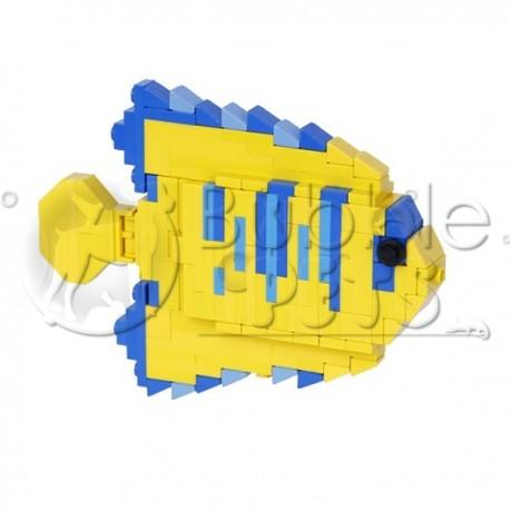Lego - Juvenile Clarion Angel - Holacanthus clarionensis - Poisson-ange doré