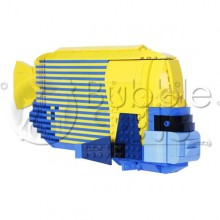 Lego - XL Emperor Angelfish - Pomacanthus imperator - Poisson Ange Empereur adulte